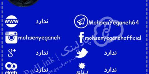 پیج های رسمی محسن یگانه - پادلینک